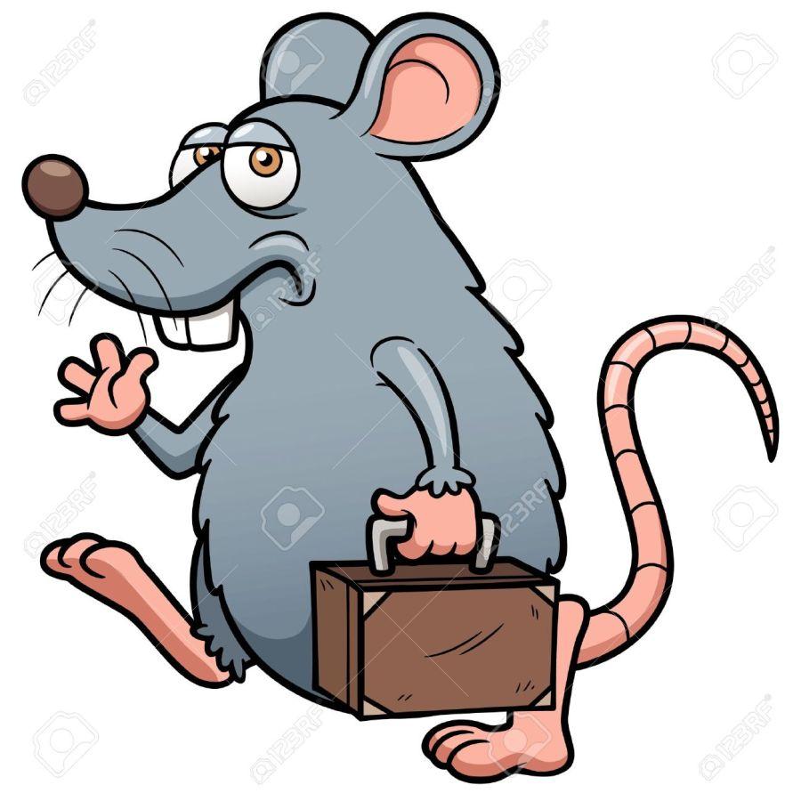 rat mate